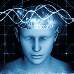 How Does the Mind Work for Biotypes